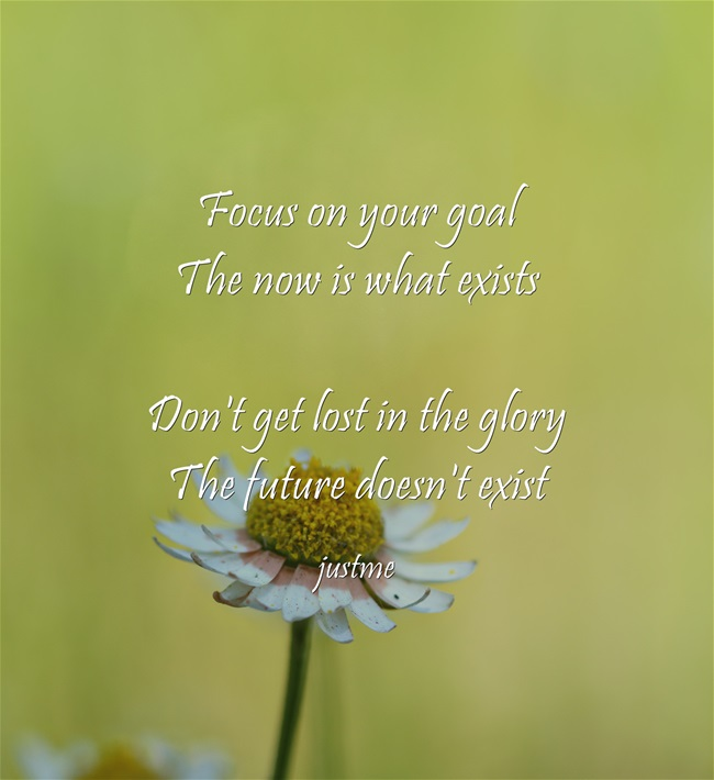 Name:  Focus-on-your-goal-The.jpg Views: 161 Size:  71.3 KB
